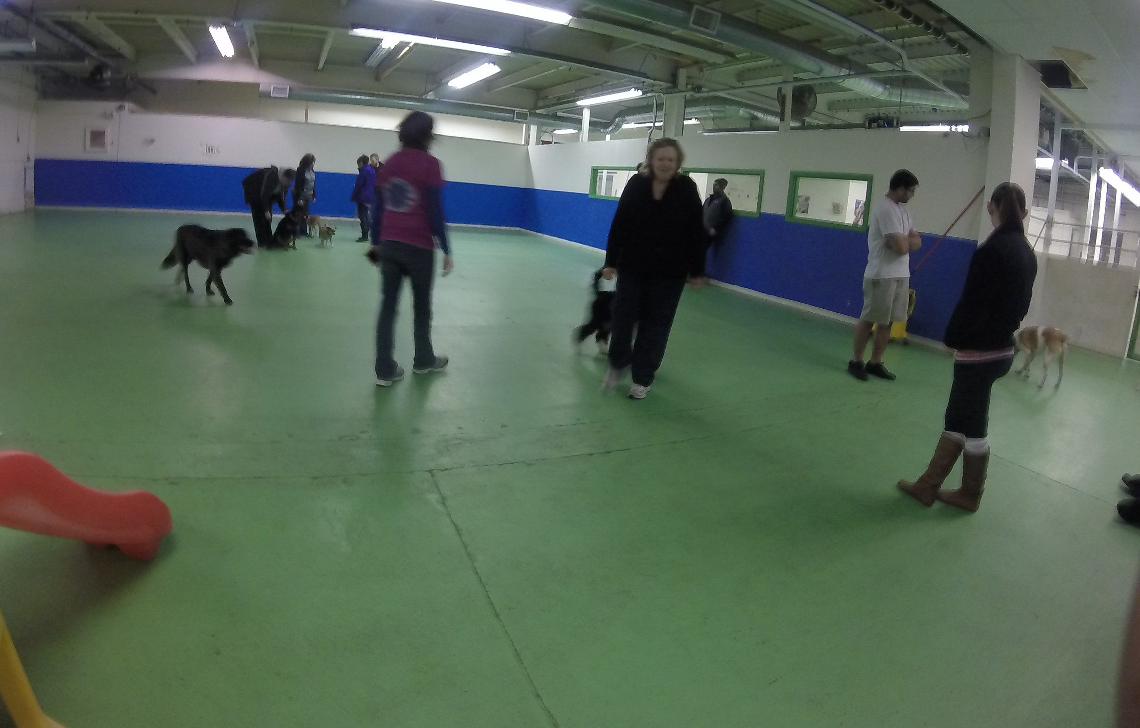 Indoor Park - Bow chika Wow Town